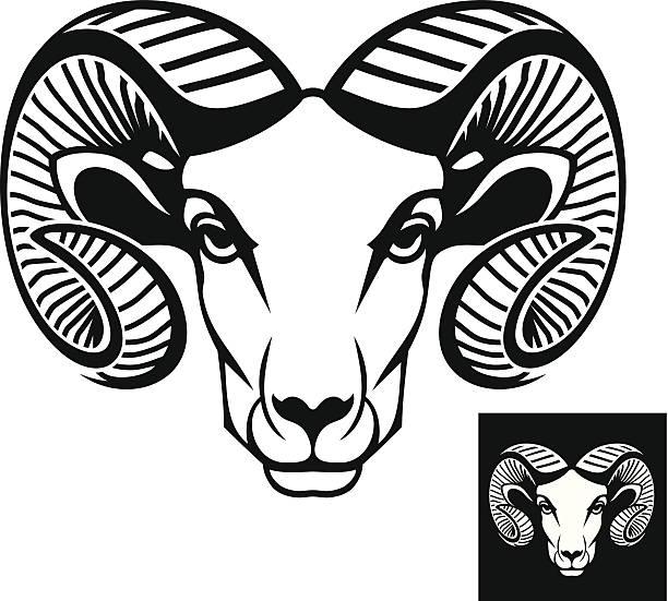 ram kopf-logo und icon - bergziegen stock-grafiken, -clipart, -cartoons und -symbole