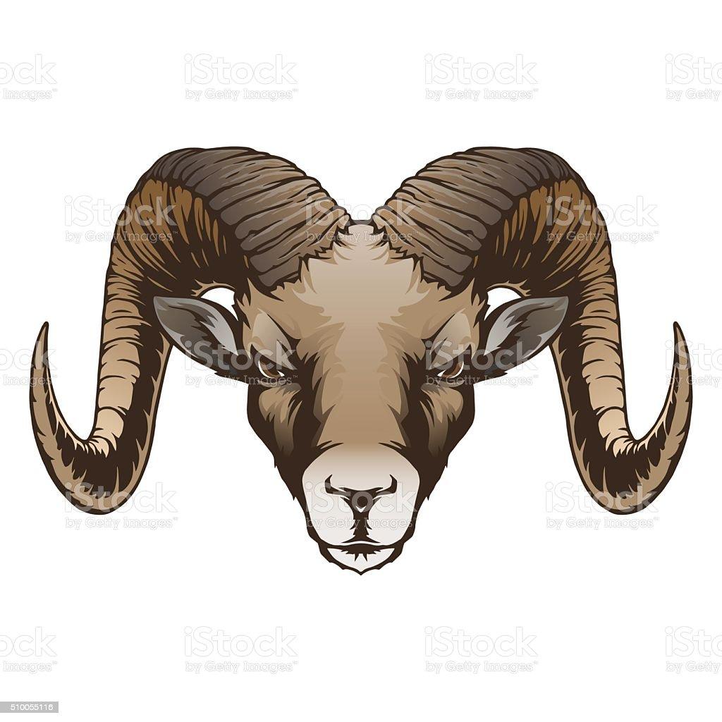 Ram head vector art illustration
