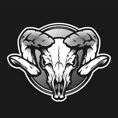 Ram skull on a dark background on a dark background.