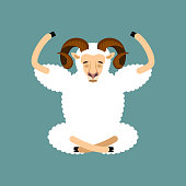 Ram yoga. Sheep Farm Animal yogi isolated. Relaxation and meditation. Vector illustration
