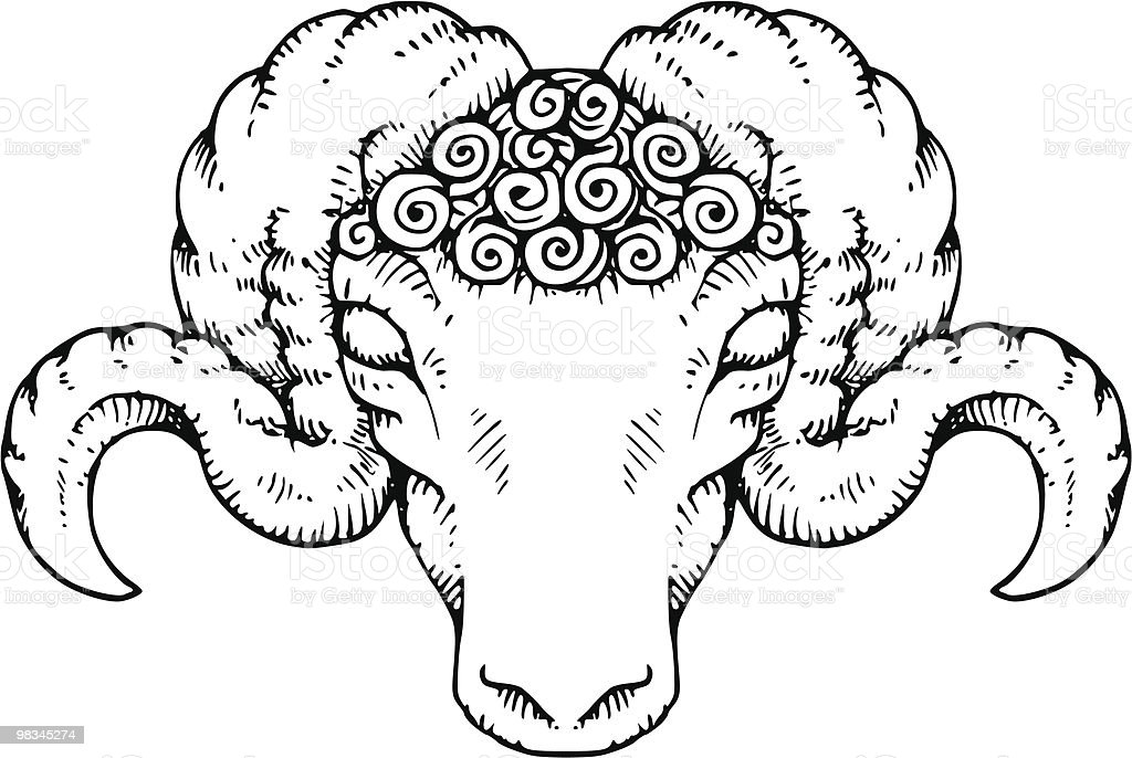 Rams Head royalty-free rams head stock vector art & more images of animal