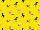 Random African Birds Wallpaper 3