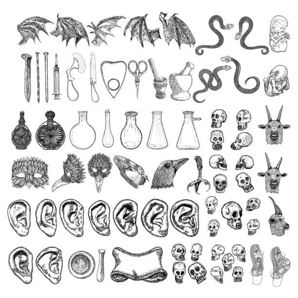 Random magic elements set. Witchcraft spell symbols. Human ear, vampire wing, bird leg, scissors, bottle with potion, nail, mortar, pestle, crow head, snake, goat, syringe, skulls, mask, banner vector Random magic elements set. Witchcraft spell symbols. Human ear, vampire wing, bird leg, scissors, bottle with potion, nail, mortar, pestle, crow head, snake, goat, syringe, skulls, mask, banner vector potion stock illustrations