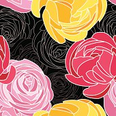 Pink and yellow Ranunculus on black background. Vector seamless pattern.
