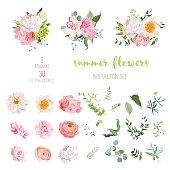 Ranunculus, rose, peony, dahlia, camellia, carnation, orchid, hydrangea vector collection
