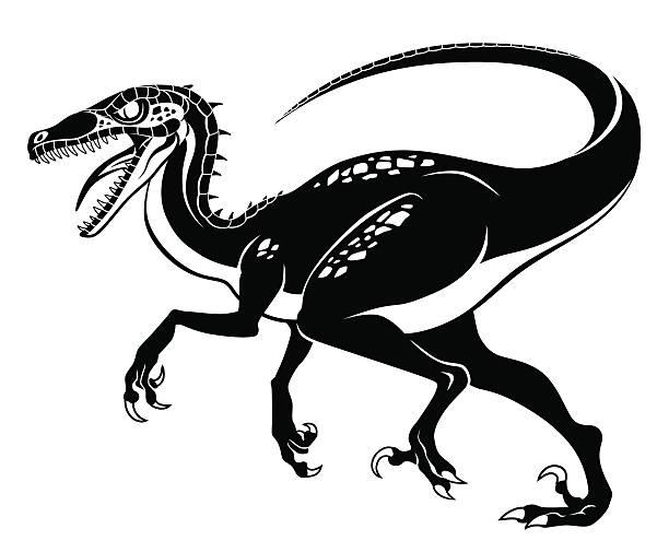 Best Velociraptor Illustrations, Royalty-Free Vector ...