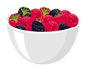 Big Pile of Fresh Raspberries and blackberries in the White Bowl. Vector illustration Isolated on the White Background