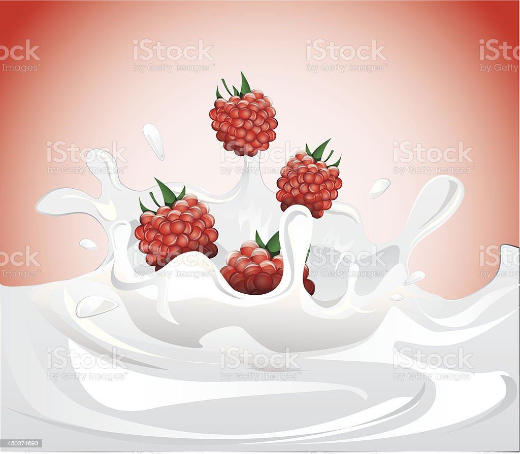 Raspberries splashing in milk royalty-free stock vector art