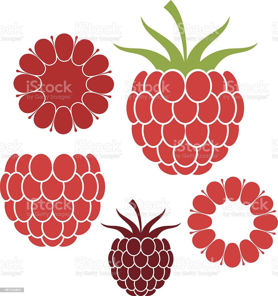 Raspberries vector art illustration