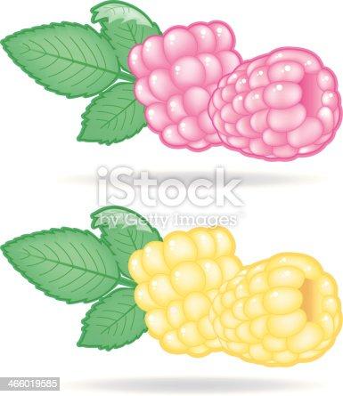 Raspberries (2 Varios with Leaf).
