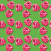 Vector illustration of seamless pattern with red raspberries on a green background in a pop art style.