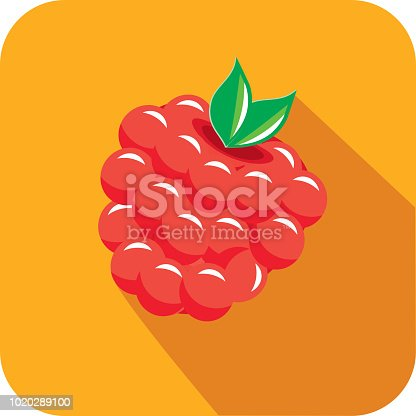Vector illustration of a raspberry fruit Flat Design themed Icon with shadow. Vector eps 10, fully editable.