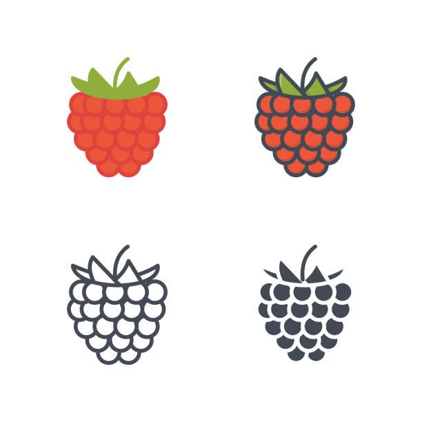 himbeer frucht essen vektor icon flache linie silhouette farbig - lachskuchen stock-grafiken, -clipart, -cartoons und -symbole