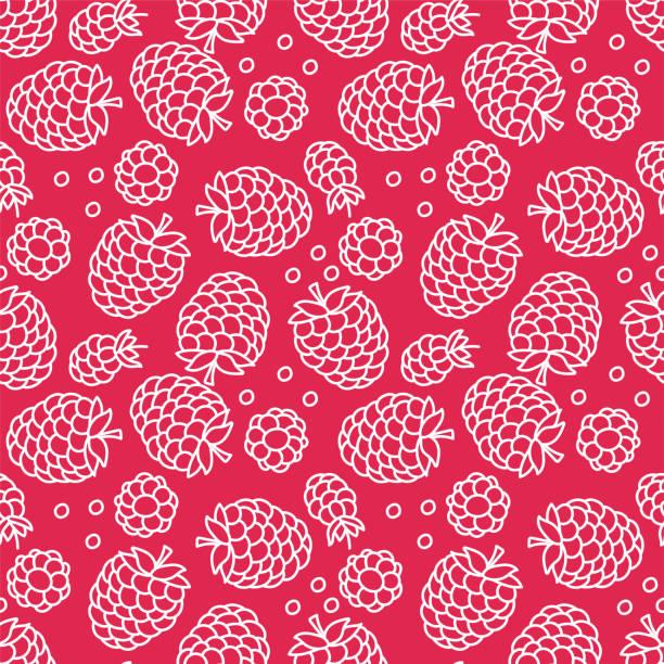 bildbanksillustrationer, clip art samt tecknat material och ikoner med hallon sömlösa mönster. handritad färsk frukt. vektor skiss bakgrund. färg doodle tapeter. röda bär print - hallon