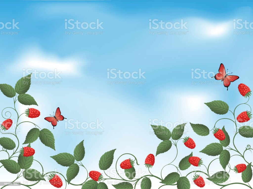 Raspberry royalty-free raspberry stock vector art & more images of abstract