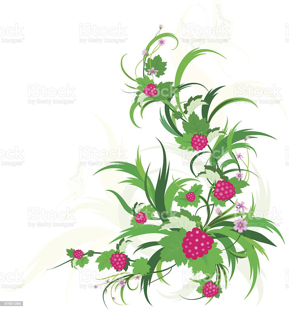 Raspberry royalty-free raspberry stock vector art & more images of art