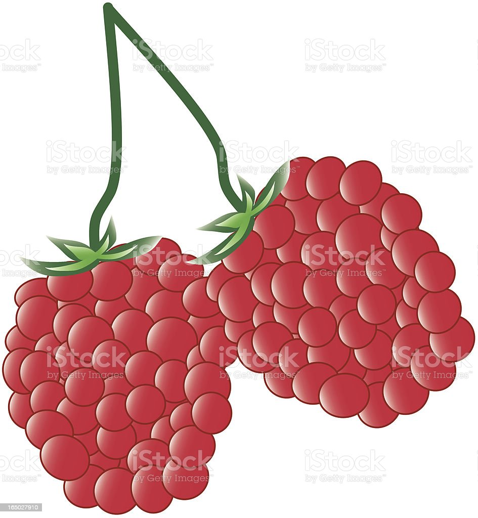 Raspberry: Vector royalty-free raspberry vector stock vector art & more images of food