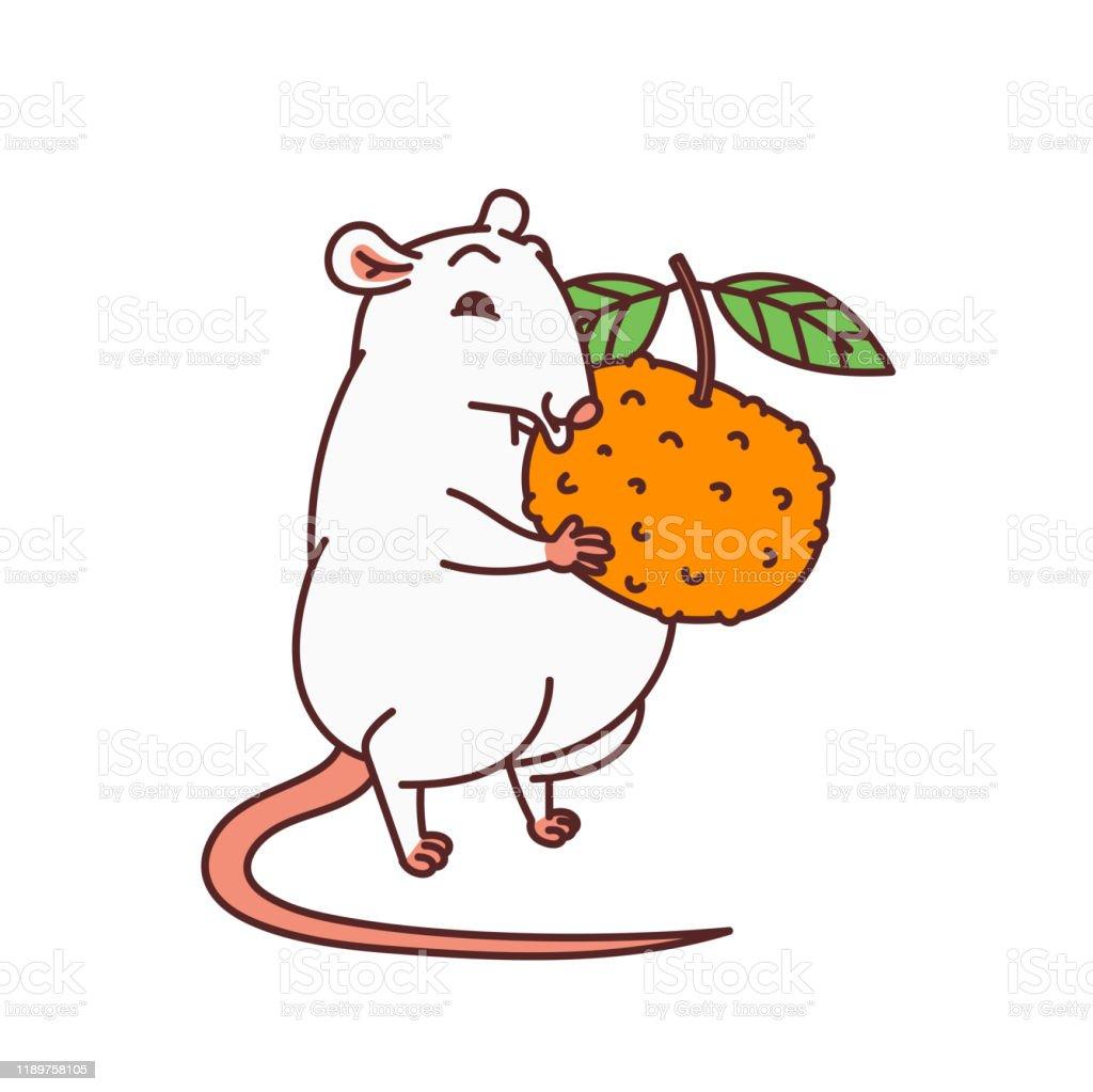 ラット中国の新年のシンボルみかんベクトルアウトライン漫画孤立イラストを保持するかわいいマウス 12星座のベクターアート素材や画像を多数ご用意 Istock