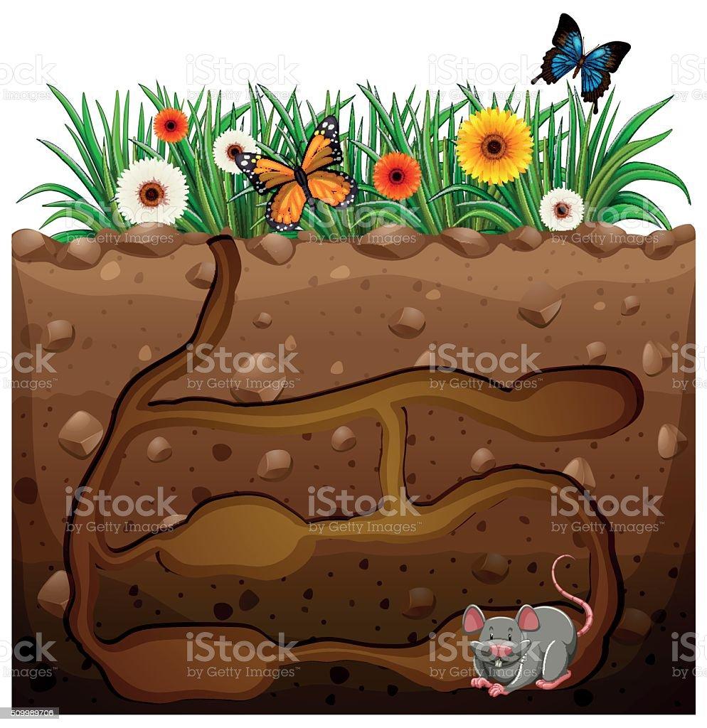 Rata agujero en jard n illustracion libre de derechos for Ahuyentar ratas jardin