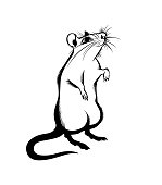rat, isolated monochrome image, drawn with strokes. Symbol of the year 2020 according to the Chinese calendar