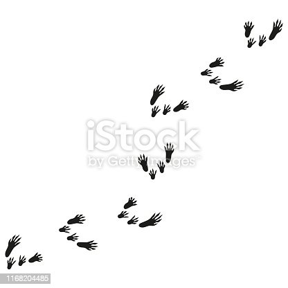 illustration with rat tracks. rat footprints.