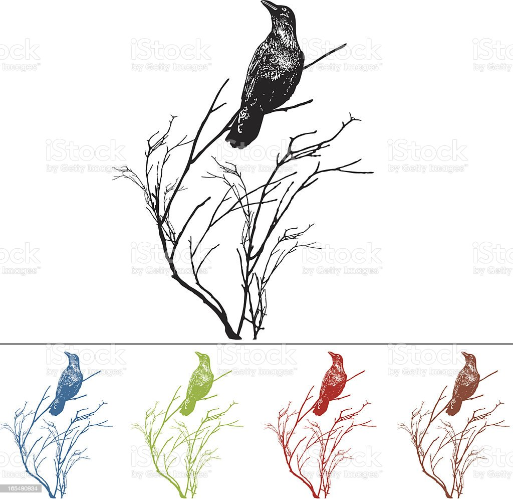 Raven on a Branch Design Element royalty-free stock vector art