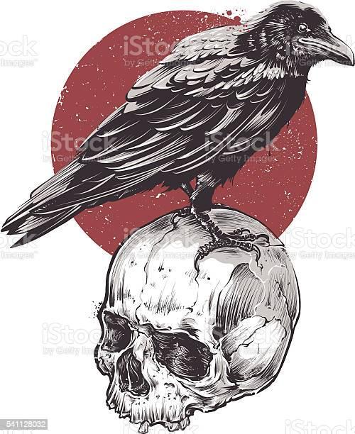 Raven on skull vector id541128032?b=1&k=6&m=541128032&s=612x612&h=ovnx97hvqfqlmrsmruwwlr57fy5ivn0nhggrrkwpogi=