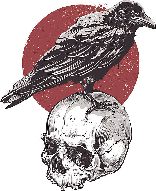 Raven on Skull vector art illustration