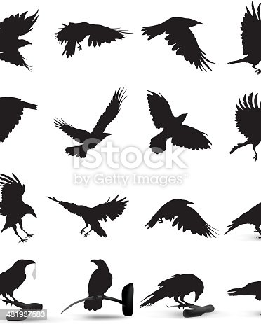 Crow free logo designs to download web20 style logo template vector material sciox Choice Image
