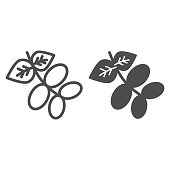 Raw cocoa pod and seed line and solid icon. Plant of coffee, leaves and grains symbol, outline style pictogram on white background. Nature or cafe sign for mobile concept, web design. Vector graphics