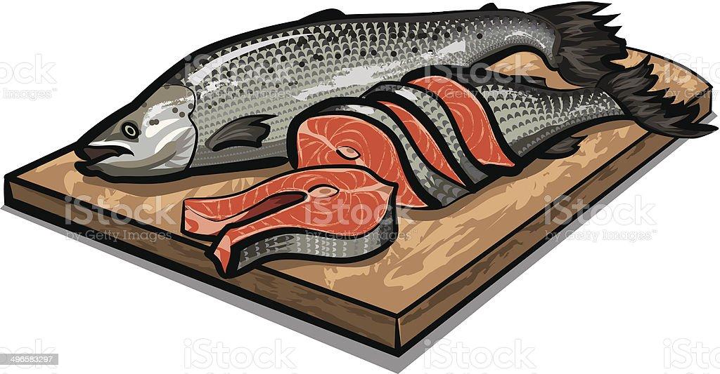 raw salmon vector art illustration