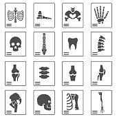 istock X ray icons 649782054
