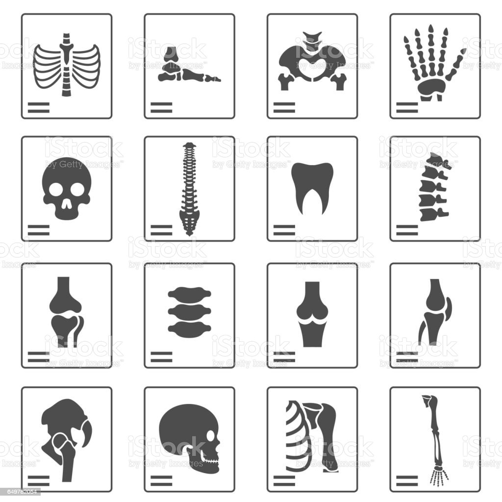 X ray icons vector art illustration