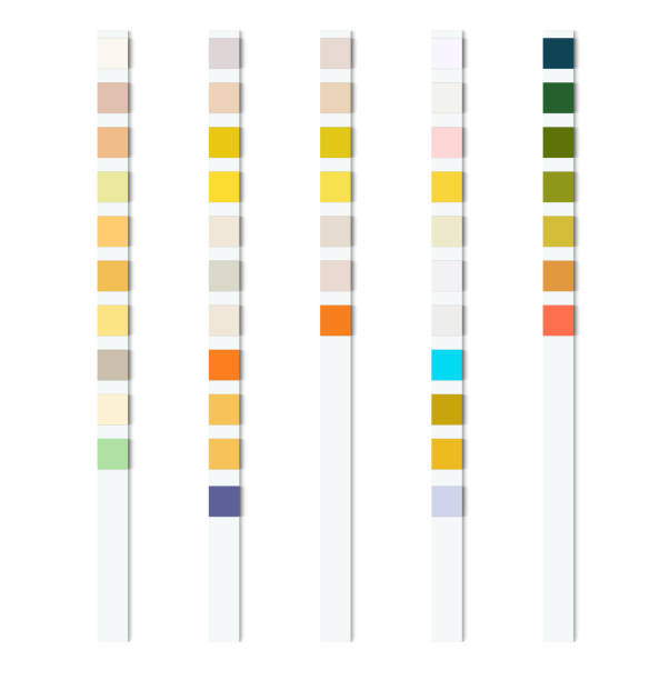 Reagent test strips for urinalysis for an automatic analyzer of physical and chemical properties and cellular composition of urine vector art illustration
