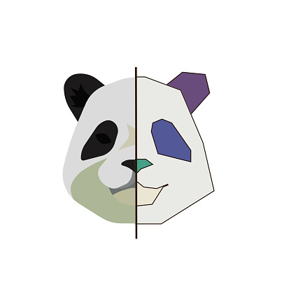 Real face of panda and a colorful sketch on white isolated background, vector illustration for Animal or Hobby topic that can be good  for making logos, décor, prints and stickers.
