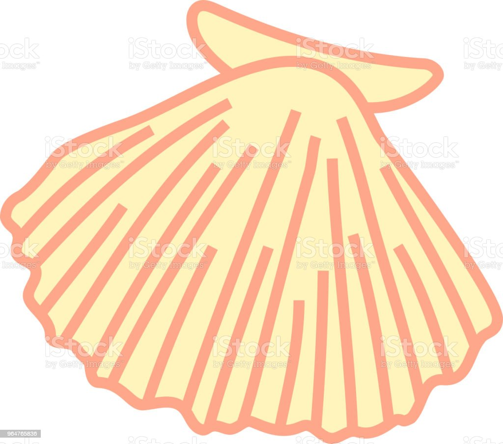 Real scallop illustration 2 royalty-free real scallop illustration 2 stock vector art & more images of august