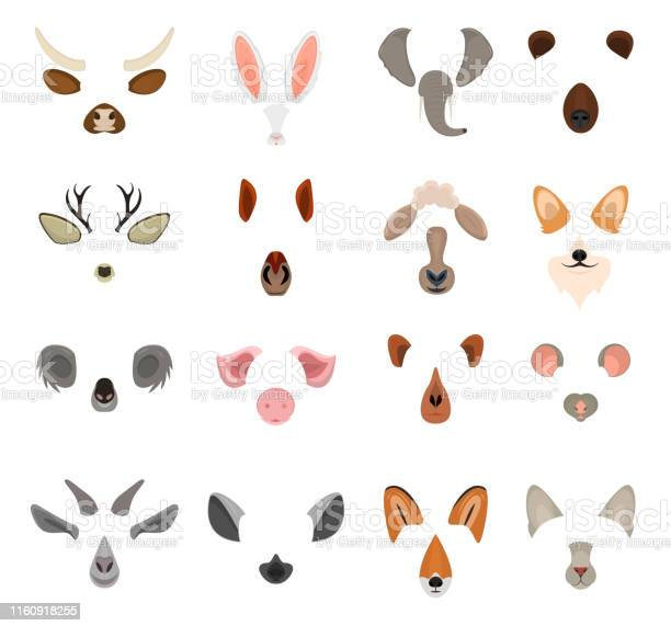 Realistic 3d detailed animal face for video chat or selfie set vector vector id1160918255?b=1&k=6&m=1160918255&s=612x612&h=grhhvenmqt15m zcaxjrcue0yrc77 csb9zuswxzkh8=