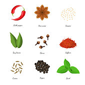 Realistic 3d Detailed Classic Spices Collection Include of Clove, Chili Pepper, Anise Star, Cumin and Saffron. Vector illustration of Condiment