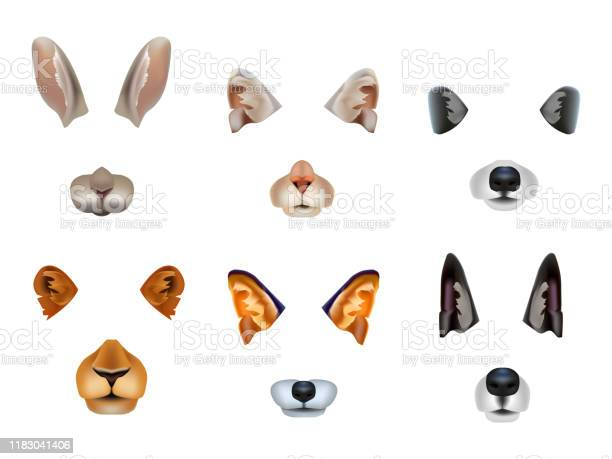 Realistic 3d detailed different video chat effects animal faces set vector id1183041406?b=1&k=6&m=1183041406&s=612x612&h=nweicvbnomq dhcmh4fnq0dvy7lqvogqsce qvtar o=