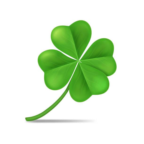 Realistic 3d Detailed Green Shamrock Leaf. Vector Realistic 3d Detailed Green Shamrock Leaf Isolated on a White Background Symbol of Celebration Irish Holiday. Vector illustration shamrock stock illustrations