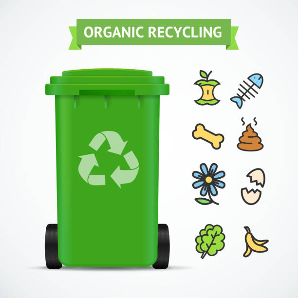 Best Compost Bin Illustrations, Royalty-Free Vector