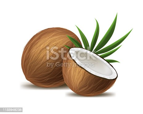 istock Realistic 3d Detailed Whole Coconut, Half and Green Leaf. Vector 1133948238