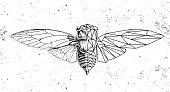 Realistic and polygonal cicada illustration. Astrology zodiac sign