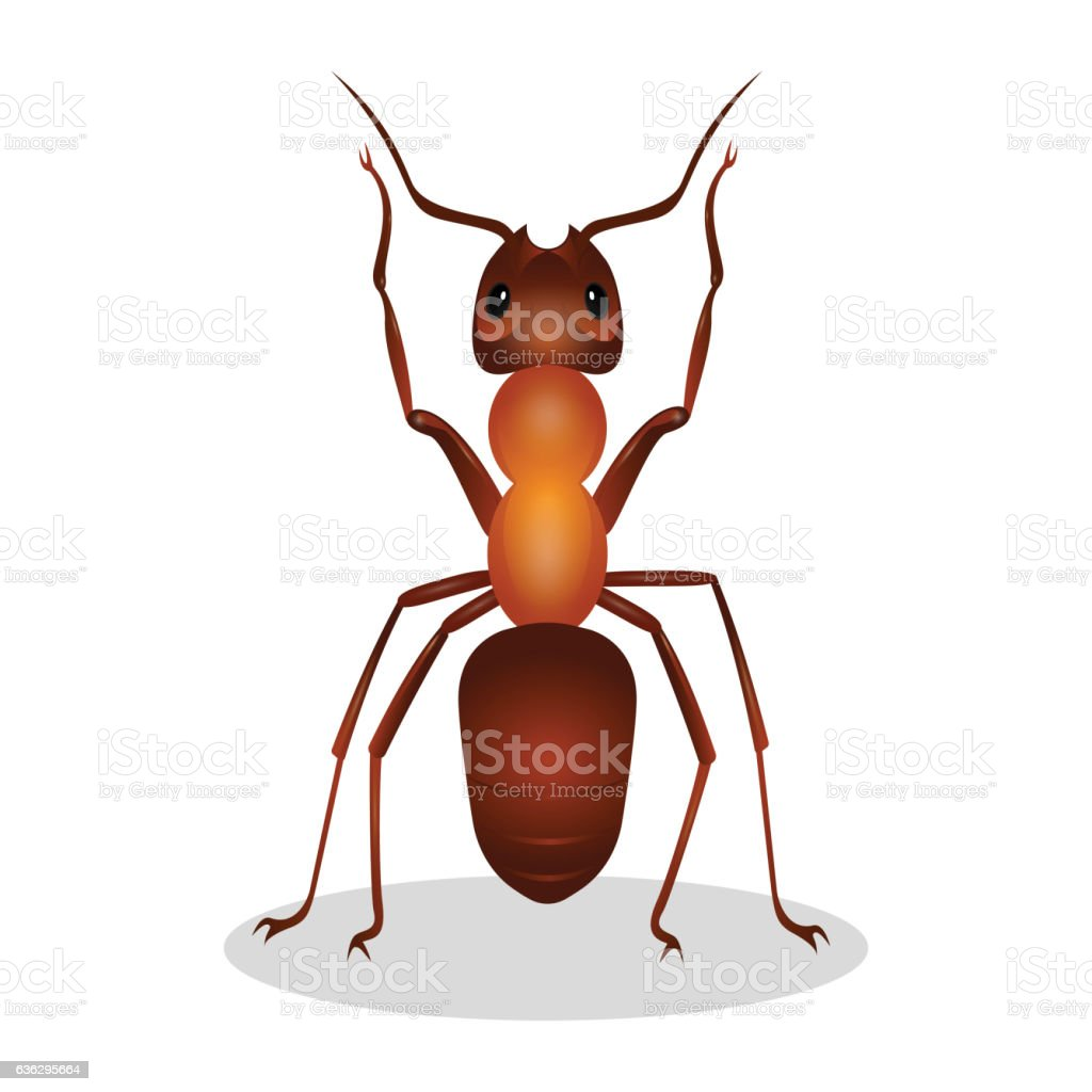 Realistic ant with two legs raised up  hooked clows isolated vector art illustration