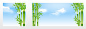 istock Realistic bamboo tree landscape scenery background with could, sky, sunrays, sunburst element design 1338197725