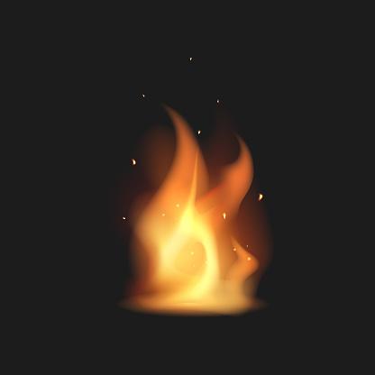 Realistic bonfire. Flame. Vector illustration.
