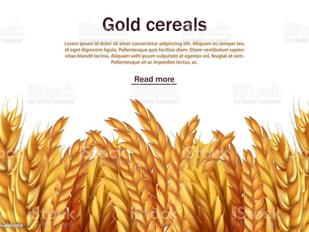 現実的な穀物ベクトルの背景のテ...