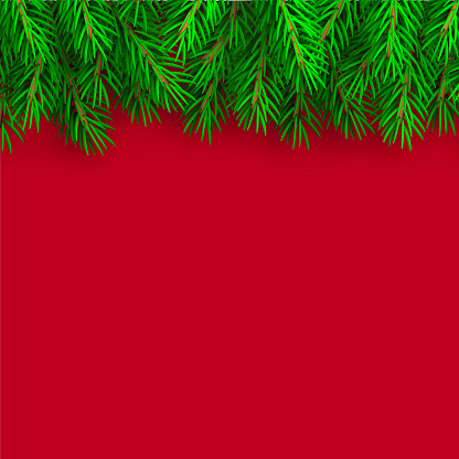 Realistic Christmas border. Xmas background with fir branches. Christmas border with fir branches. Christmas decoration tree branches with shadow - stock vector.