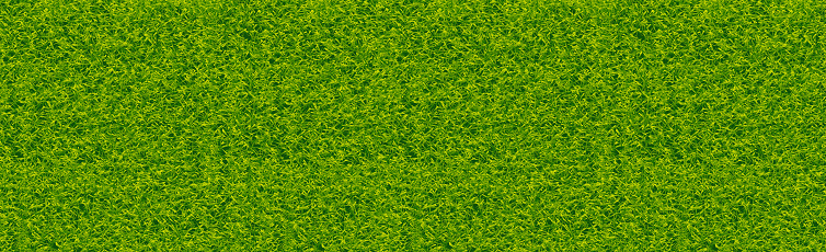 Realistic classic football field with two-tone green coating