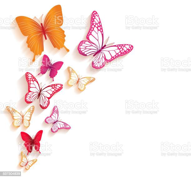 Realistic colorful butterflies isolated for spring vector id537304839?b=1&k=6&m=537304839&s=612x612&h=exdsfy7thktl4ttaybanusyqmlapch8jbrjzqlyu6y0=